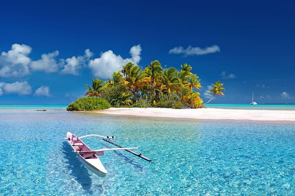 Explore Zanzibar.