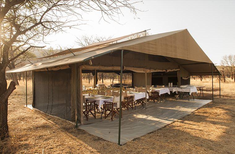 Katikati Camp - Serengeti