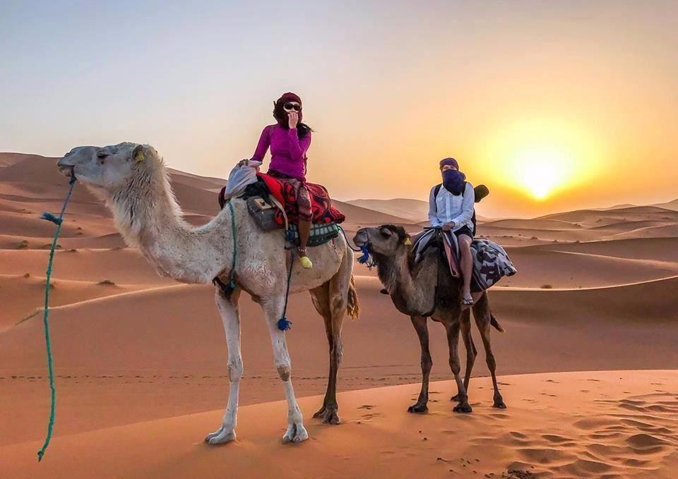 Morocco_Desert_Tourist_Camel