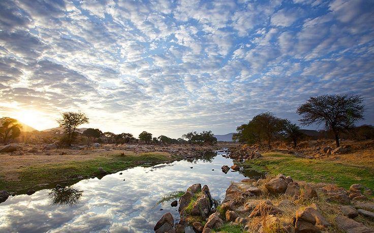 Ruaha river view